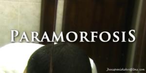Paramorfosis