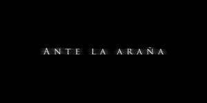 Ante La Araña